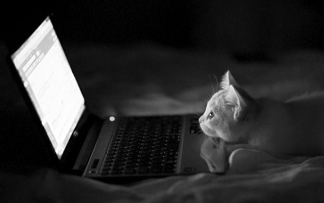 какой лучше выбрать ноутбук купить в Херсоне Николаеве